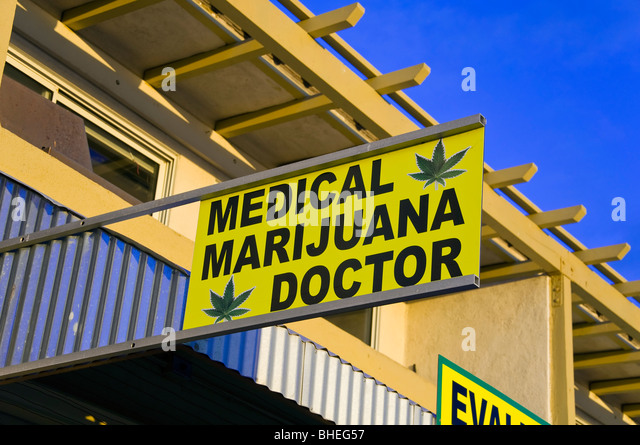 Medical Kush Doctor Venice Beach Ca