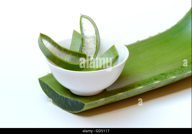 echte aloe stock photos echte aloe stock images alamy. Black Bedroom Furniture Sets. Home Design Ideas