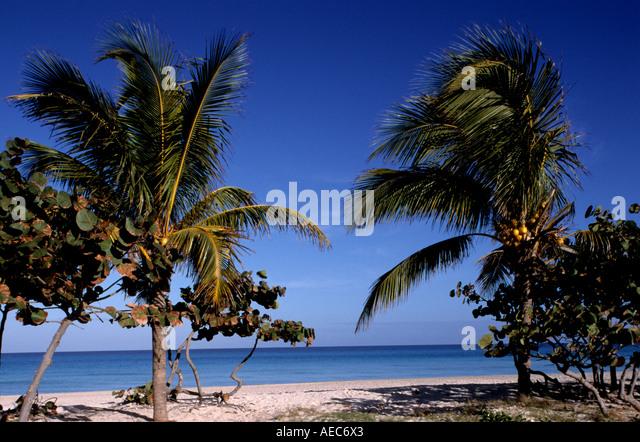 Tropical Island Sun: Beautiful Child Girl Cuba Stock Photos & Beautiful Child