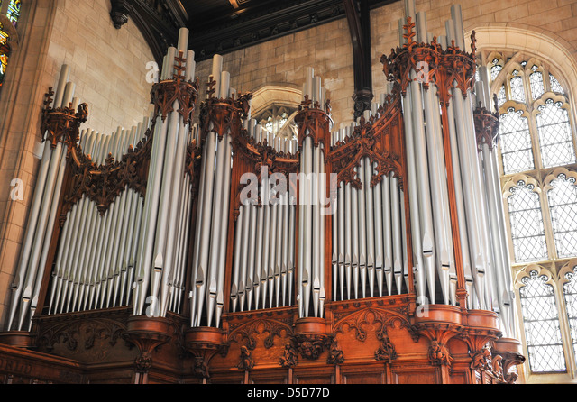 Wide Shot Of Beautiful Pipe Organ Pipes In A Cathedral Church