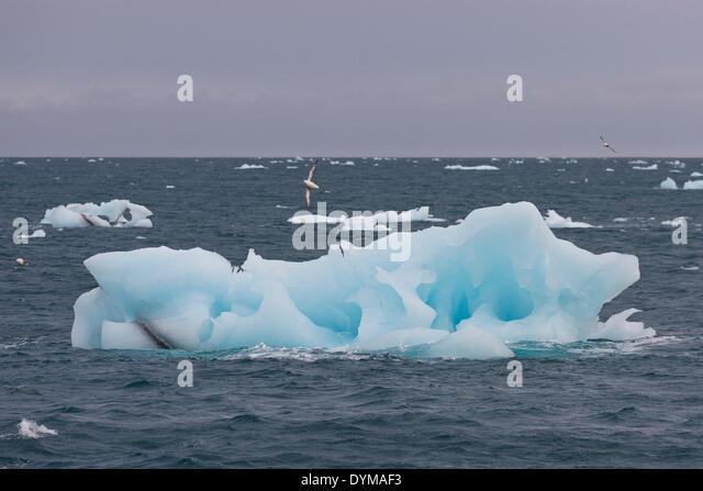 Jan mayen stock photos jan mayen stock images alamy for Floating rock norway