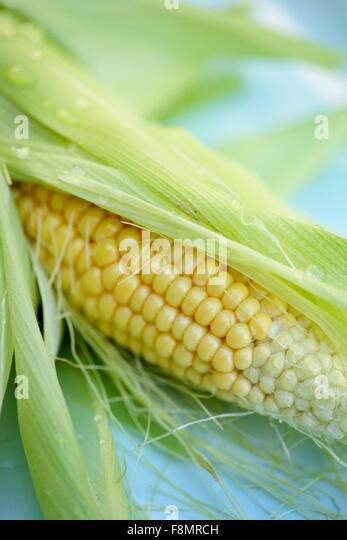 how to cook shucked corn