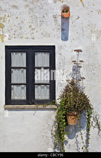 black wood window with lace curtains stock image