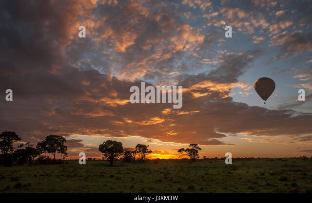 Hot air balloon over African savannah at sunrise, Masai Mara National Reserve, Kenya - Stock Image