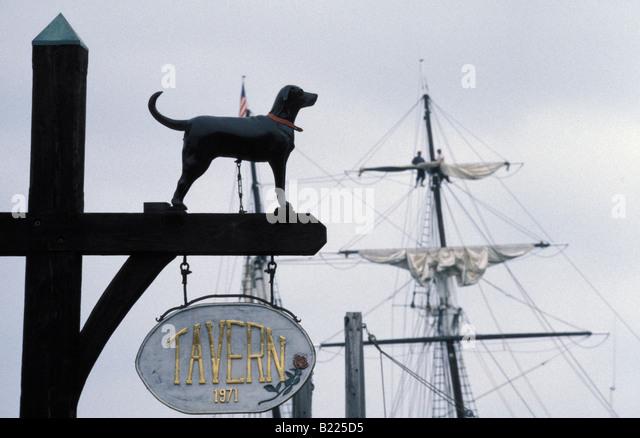 Black Dog Pub Ajax