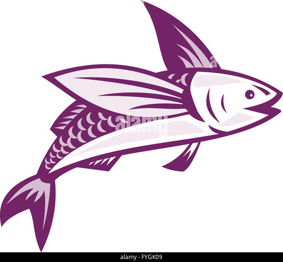 Flying fish illustration stock photos flying fish for Flying fish drawing