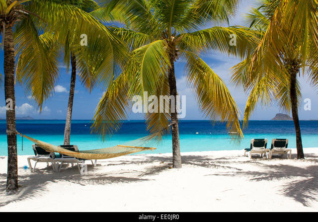 Caribbean Beach Scenes: Beach View Palm Trees Hammock Stock Photos & Beach View