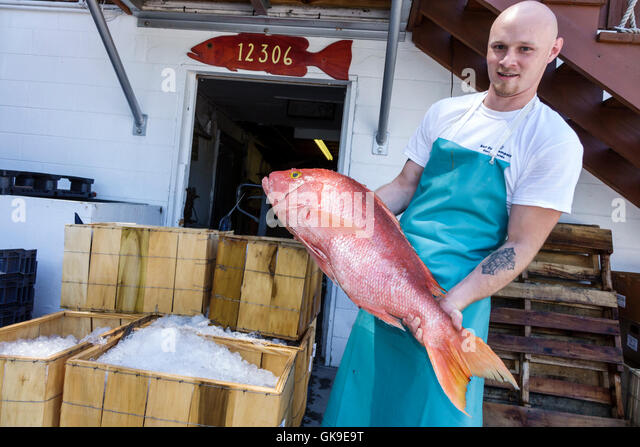 Fish market in mexico stock photos fish market in mexico for Mexican gulf fishing company
