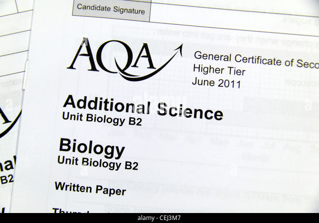 2011 writing sats paper online