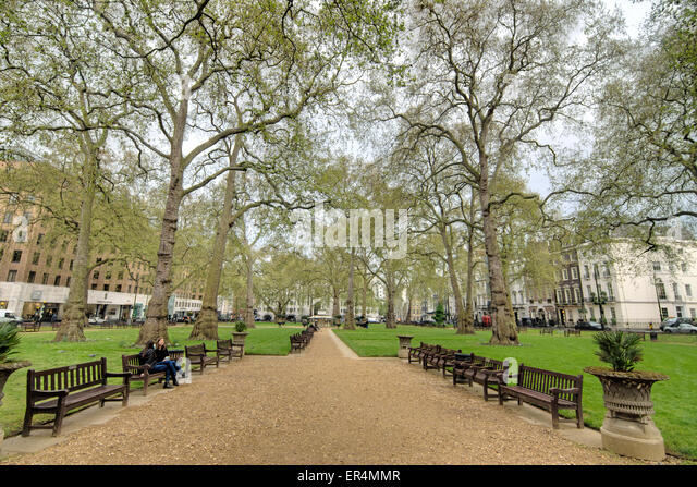 Berkley square stock photos berkley square stock images for Garden trees london