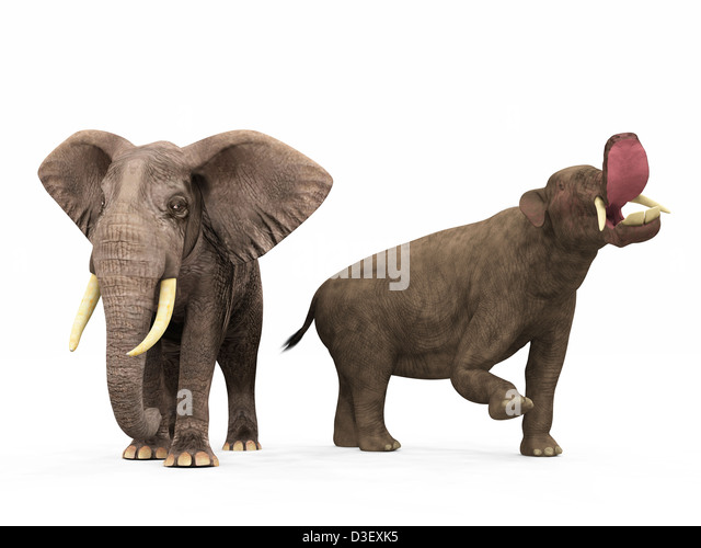 Mammoth compared to human - 48.2KB