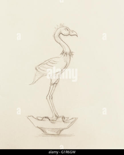 flamingo illustration original hand drawing on paper stock image - Coloring Book Paper Stock