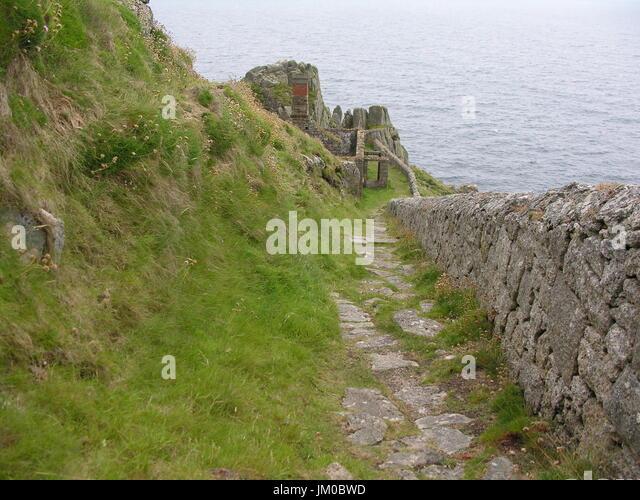 Island Bristol Channel Puffins