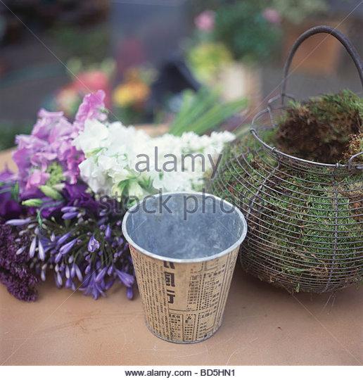 Cache Pot Stock Photos & Cache Pot Stock Images - Alamy