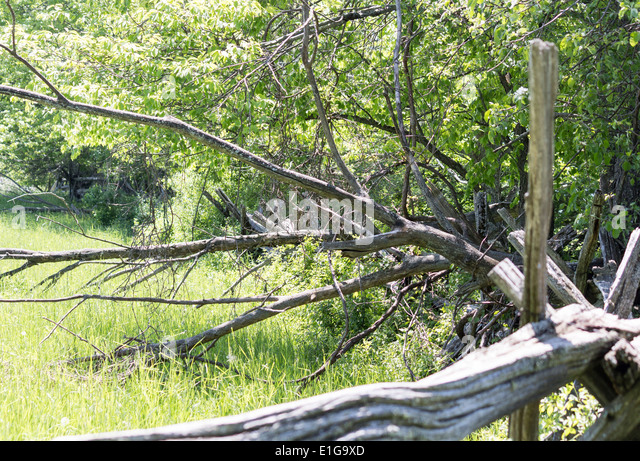 Farm split rail fence stock photos