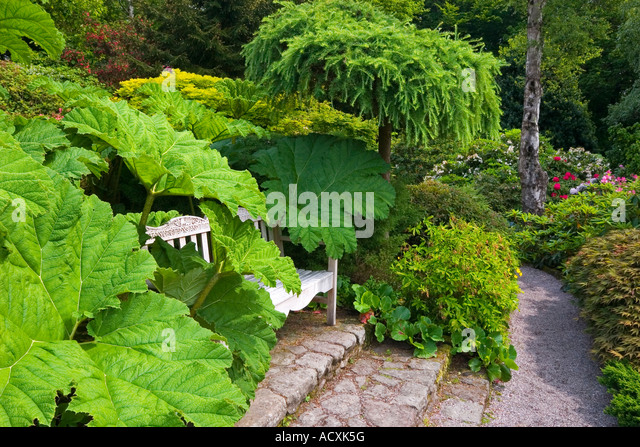 Wonderful Gardens Spring Hillside Stock Photos  Gardens Spring Hillside  With Licious View Of Bench And Gunnera At Lea Gardens Near Matlock In The Derbyshire  Peak District England With Nice Vegetable Garden On Slope Also Canopy For Garden Swing Seat In Addition Covent Garden Moomin Shop And Garden Netting As Well As Garden Statue Cat Additionally Restaurants Near The Botanical Gardens From Alamycom With   Licious Gardens Spring Hillside Stock Photos  Gardens Spring Hillside  With Nice View Of Bench And Gunnera At Lea Gardens Near Matlock In The Derbyshire  Peak District England And Wonderful Vegetable Garden On Slope Also Canopy For Garden Swing Seat In Addition Covent Garden Moomin Shop From Alamycom