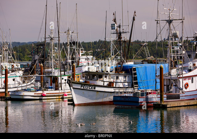 Fishing boats in harbor stock photos fishing boats in for Newport harbor fishing