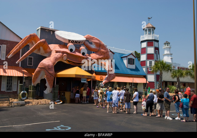 Giant Crab Stock Photos Giant Crab Stock Images Alamy