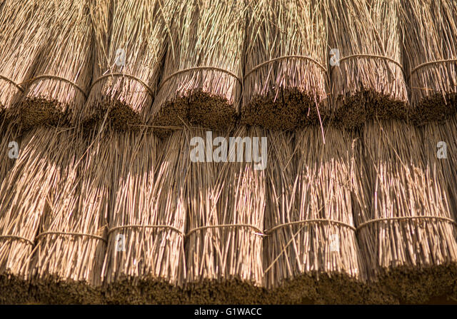 Roof Straw Amp Thatch Roof