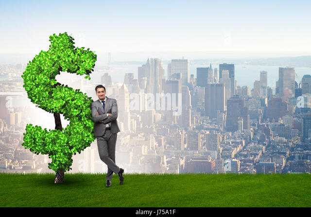 what is the concept of sustainable income Sustainable income is defined as the most likely level of income to be obtained in the future.