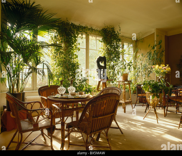 Interiors Traditional Dining Rooms Houseplants Stock Photos ...