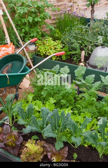 Protecting garden vegetables stock photos protecting for Vegetable garden tools