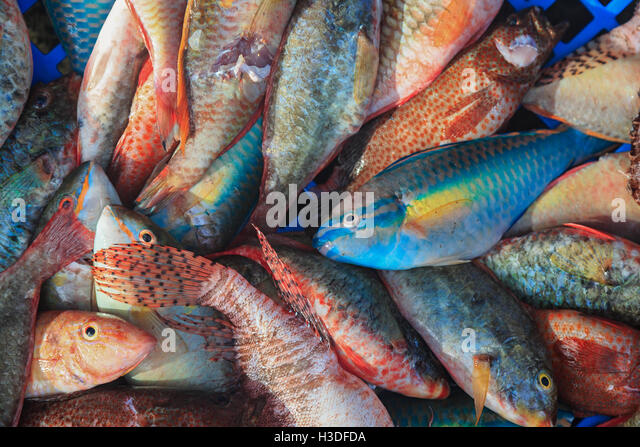 Jamaica market stock photos jamaica market stock images for Jamaica fish market
