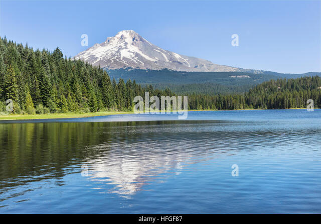 Mount hood national forest stock photos mount hood for Clear lake oregon fishing