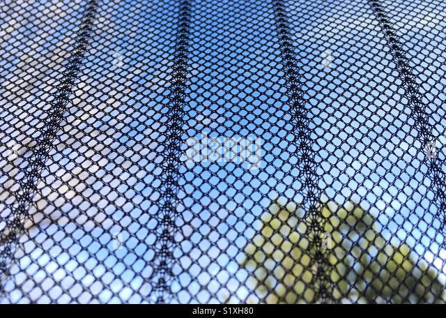 Interesting Texture Pattern On Mesh Screen Door Shade   Stock Image
