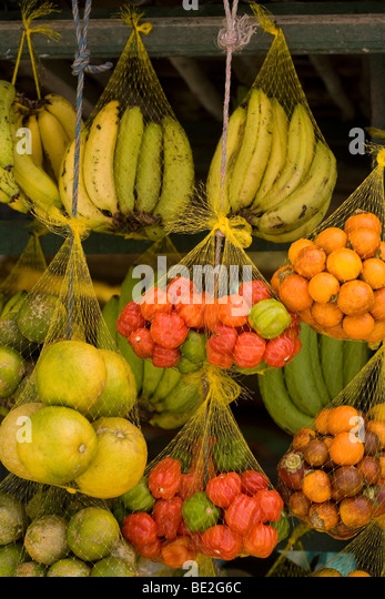 Rainforest Foods Stand Stock Photos & Rainforest Foods Stand Stock ...