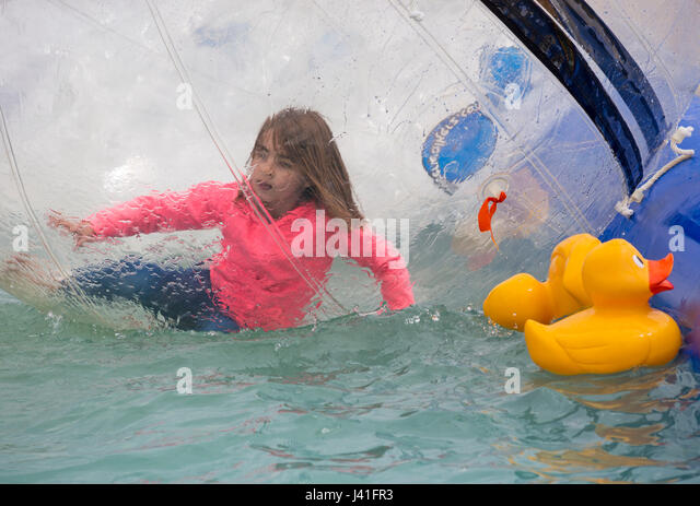 Rubber duck in pool stock photos rubber duck in pool - Swimming pools in weymouth dorset ...