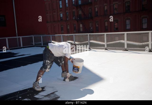 Volunteers Paint A School Coolroof In Harlem In New York   Stock Image