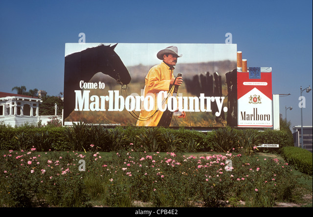 Buy Camel cigarettes in Miami