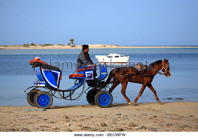Couple from tunisia djerba