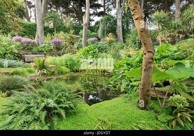 Exotisme stock photos exotisme stock images alamy for Jardin georges delaselle