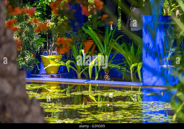 Jardin majorelle gardens stock photos jardin majorelle for Jardin yves saint laurent