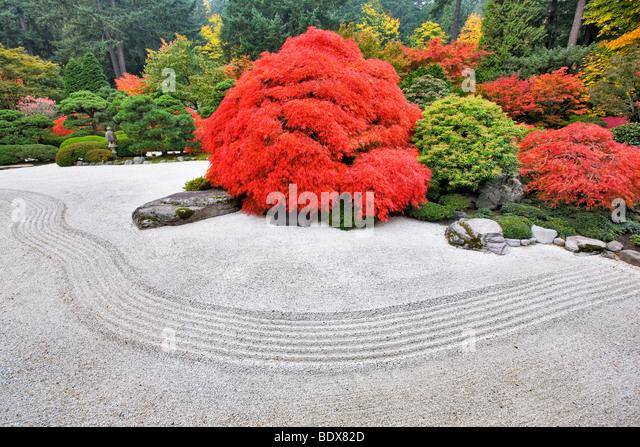 Rock Garden With Fall Color. Portland Japanese Gardens. Oregon   Stock Image