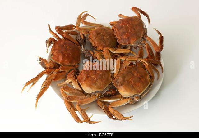 Hairy Crab China Stock Photos & Hairy Crab China Stock ...