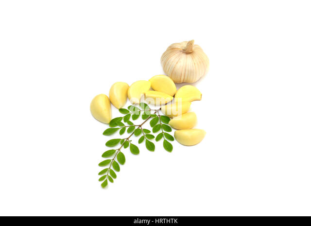 malunggay moringa olifeira seeds as capsules for hypertension The moringa seeds grow inside of large pods that grow from the moringa oleifera tree the moringa oleifera is a rather small, slender tree but has deep roots and may grow up to 15 to 20 feet in length.