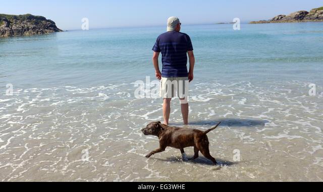 Dog Walks On Mull