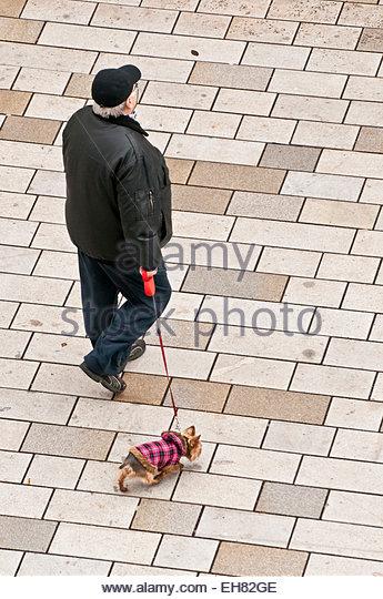Dog Walks Near Stokesley