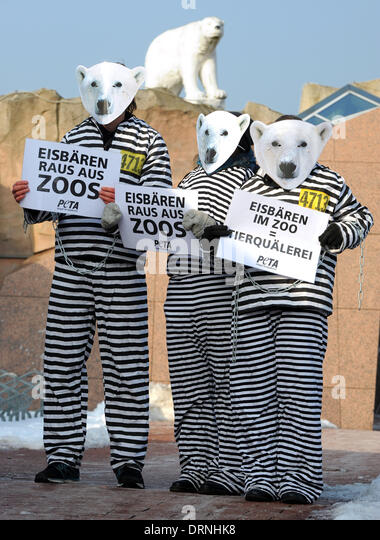 animal rights analysis about peta activist Essay on animal rights: analysis about peta activist english 101-035 16  animal rights is the idea that animals have the same rights as humans, to live free of .
