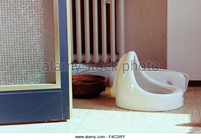 Urinal Lying On The Floor   Stock Image