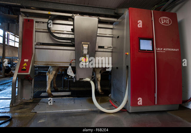 automated milking system Delaval robotic milking is built on a seamless integration of human, cow and technology  the delaval bcs is a fully automated scoring system that eliminates the .