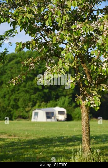 prairie farm divorced singles dating site Meet tons of available women in prairie farm on mingle2com — the best online dating site for prairie farm singles sign up now for immediate access to our prairie farm personal ads and find hundreds of attractive single women looking for love, sex, and fun in prairie farm.