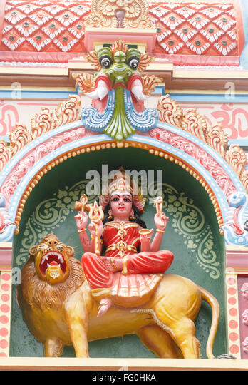 lion in tamil Posts about lion king written by tamil and vedas.