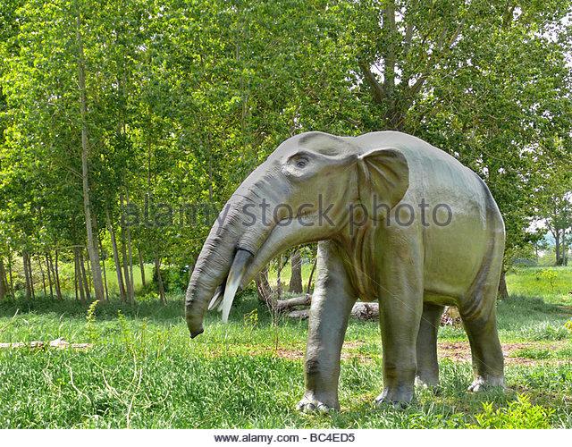 Gomphotherium (Gomphotherium), primitiver Elefant, Mastodonart ...