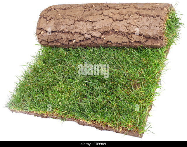 Carpet Roll Stock Photos Amp Carpet Roll Stock Images Alamy