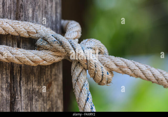 closeup knot of thick rope tied around a wooden stake - Stock Image & Rope Stake Tie Tent Stock Photos u0026 Rope Stake Tie Tent Stock ...