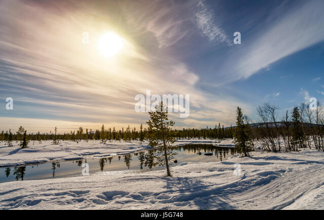 Winter Landscape, Lapland, Sweden - Stock Image